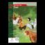 TvT accent - Taal 2 - zorgschrift b