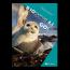 BIOgenie GO! 4.1 - leerwerkboek