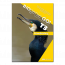 BIOgenie GO!-T 3 - handleiding